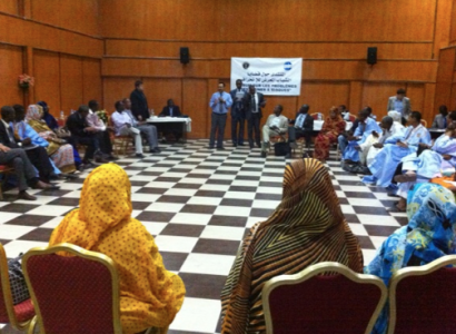 Mauritania Professionals discuss Youth at Risk