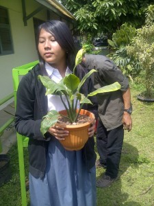 youth environmentalist,